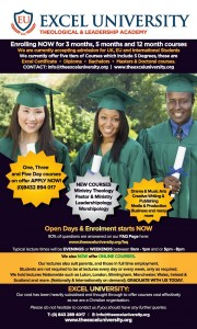 Excel University New flyer